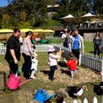 Wisemans-Ferry-Inn-nsw-pub-hotel-accommodation-kids-area