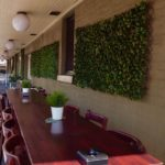 argyle-hotel-moss-vale-nsw-pub-accommodation-exterior4.jpg